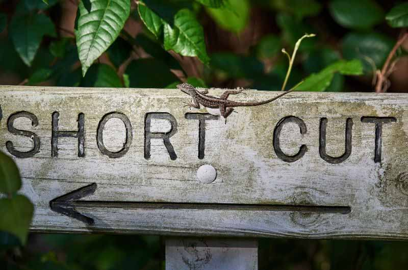 Avoid Shortcuts